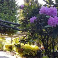 tenuta_casa_cima_ticino_guesthouse (12)